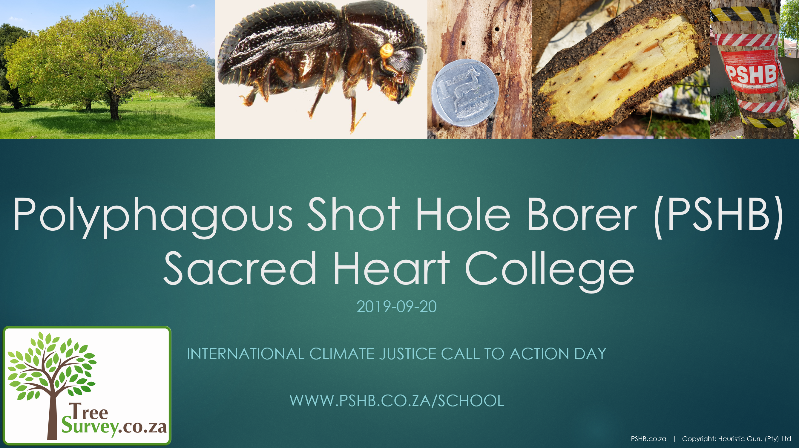 Sacred Heart College – International Climate Justice Call to Action Day